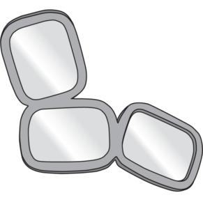 mirror fauve